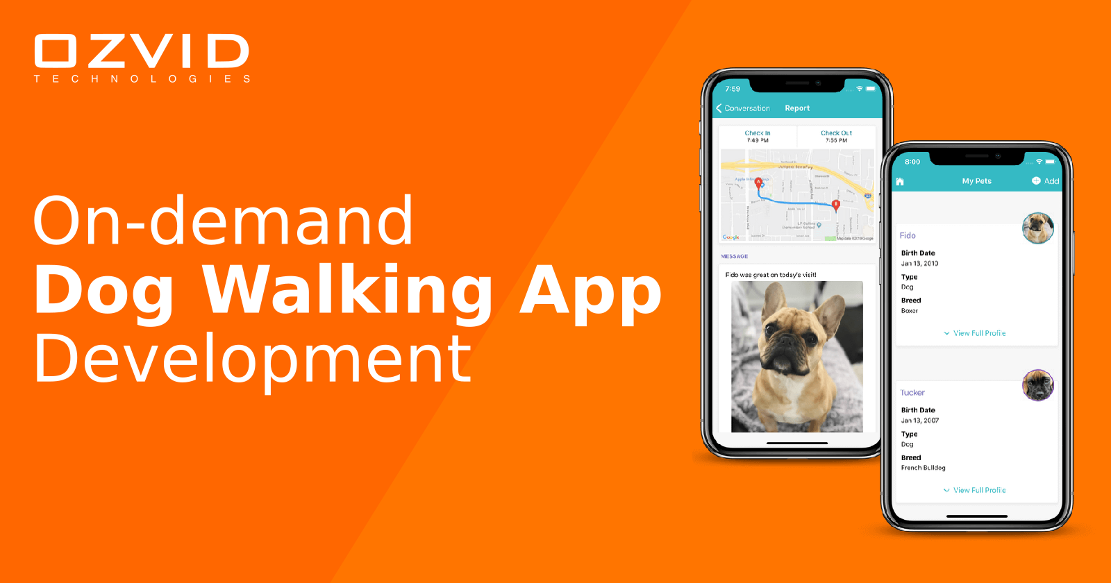On-demand Dog Walking App That Can Help You Raise billion Dollars